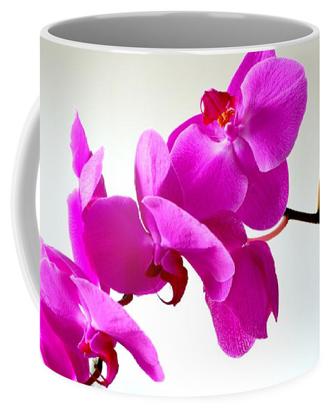 Orchid Coffee Mug featuring the photograph Green Field Sweetheart Orchid No 1 by Mary Deal