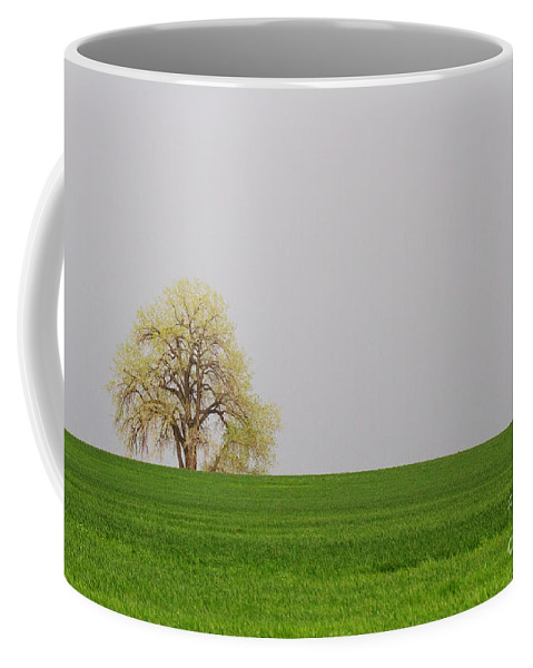 Pasture Coffee Mug featuring the photograph Green On Green by Jim Garrison