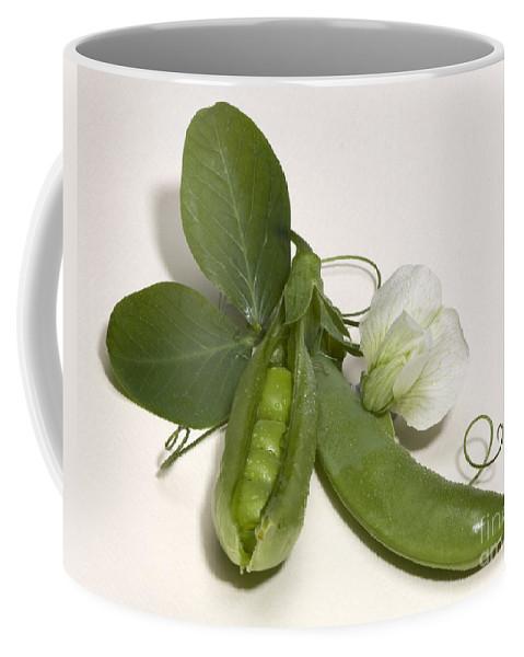 Iris Holzer Richardson Coffee Mug featuring the photograph Green Peas In Pod With White Flower by Iris Richardson