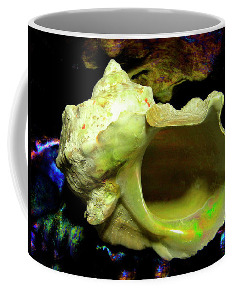 Frank Wilson Coffee Mug featuring the photograph Green Turban Seashell by Frank Wilson