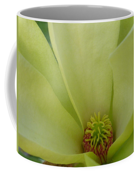 Garden Coffee Mug featuring the photograph Green With Envy by Lingfai Leung