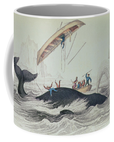 Boat; Capsized; Overturned; Upside Down; Ship; Sea; Iceberg; Harpoons; Arctic Coffee Mug featuring the drawing Greenland Whale Book Illustration Engraved By William Home Lizars by James Stewart