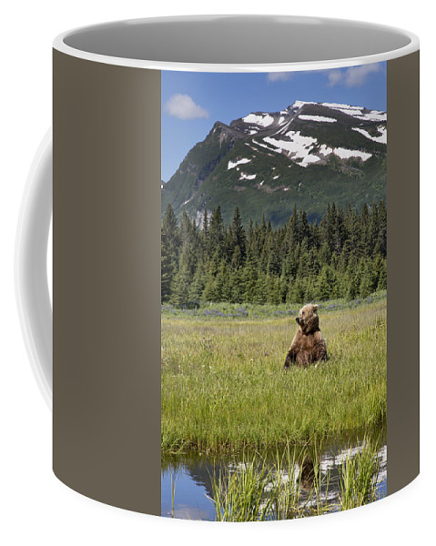 Richard Garvey-williams Coffee Mug featuring the photograph Grizzly Bear In Meadow Lake Clark Np by Richard Garvey-Williams