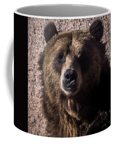 Animals Coffee Mug featuring the photograph Grizzly by Ernie Echols