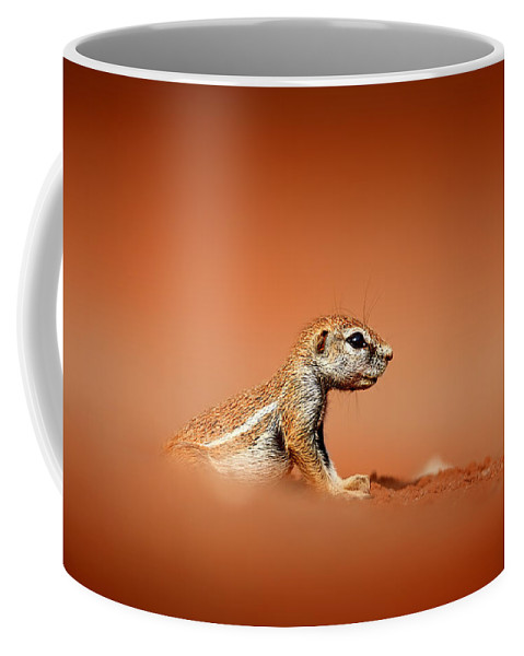 Squirrel Coffee Mug featuring the photograph Ground Squirrel On Red Desert Sand by Johan Swanepoel