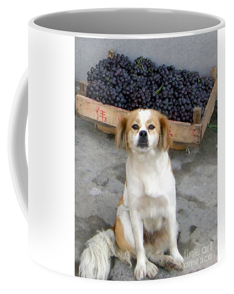 Dog Coffee Mug featuring the photograph Guardian Of The Grapes by Barbie Corbett-Newmin