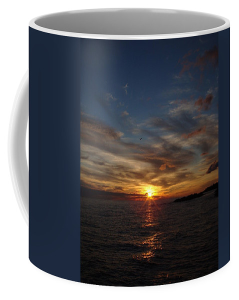 Sea Gull Coffee Mug featuring the photograph Gull Rise by Bonfire Photography