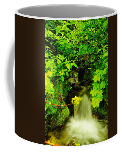 Rivers Coffee Mug featuring the photograph Gurgling Down The Mountain by Jeff Swan