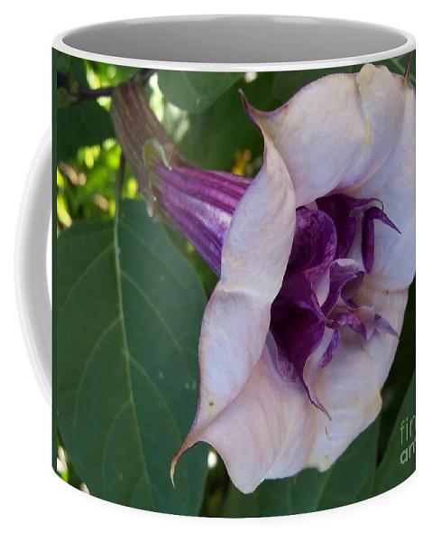 Flower Macro Coffee Mug featuring the photograph Gypsy Ballerina by Lingfai Leung