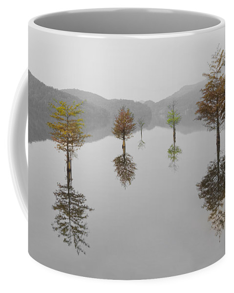 Appalachia Coffee Mug featuring the photograph Hanging Garden by Debra and Dave Vanderlaan