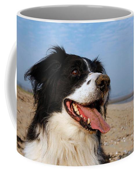 Animal Coffee Mug featuring the photograph Happy Dog by Steve Ball