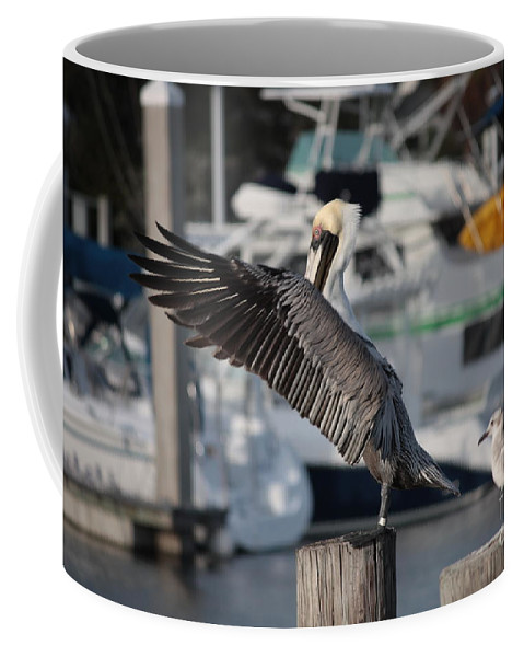 Birds Coffee Mug featuring the photograph Harbor Pelican And Gull by Carol Groenen