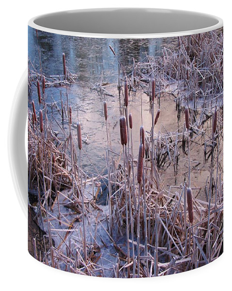 Winter Coffee Mug featuring the photograph Hardy Cat O Nine Tails by John Malone