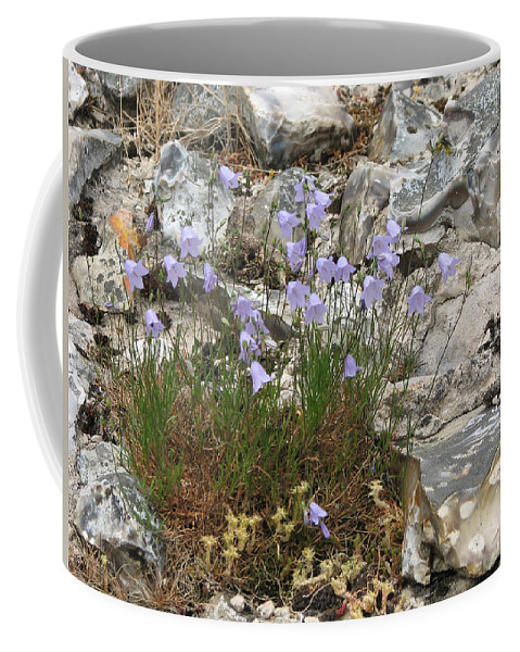 Plant Coffee Mug featuring the photograph Harebells by Stephanie Grant