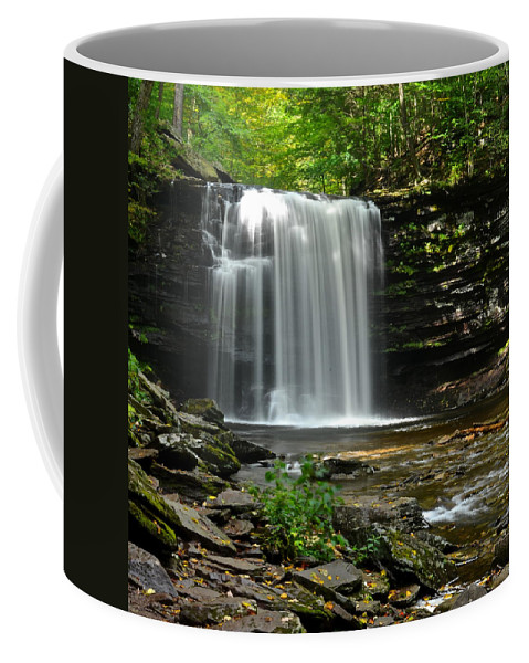 Harrison Coffee Mug featuring the photograph Harrison Wright Falls by Frozen in Time Fine Art Photography