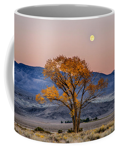 Moon Coffee Mug featuring the photograph Harvest Moon by Cat Connor