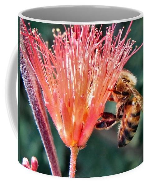 Bee Coffee Mug featuring the photograph Harvesting by Deb Halloran