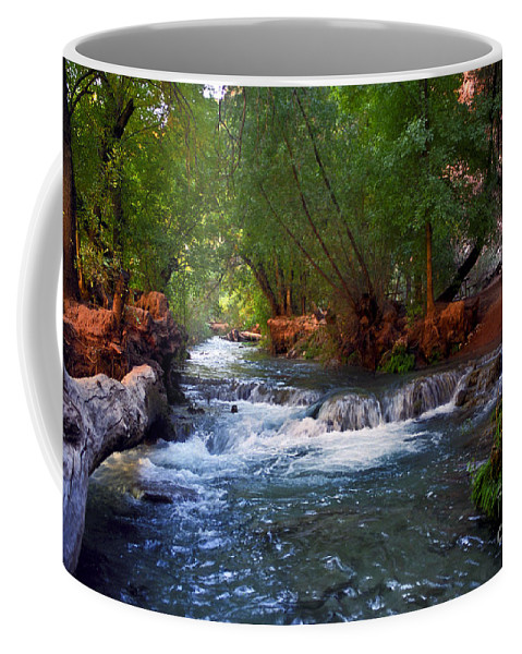 Arizona Coffee Mug featuring the photograph Havasu Creek by Kathy McClure