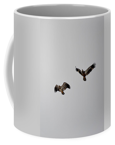 Red-tailed Hawk Coffee Mug featuring the photograph Hawk Joy by Thomas Phillips