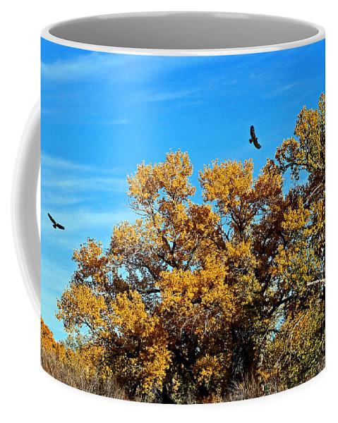 Hawk Coffee Mug featuring the photograph Hawks Afar by Bob Hislop