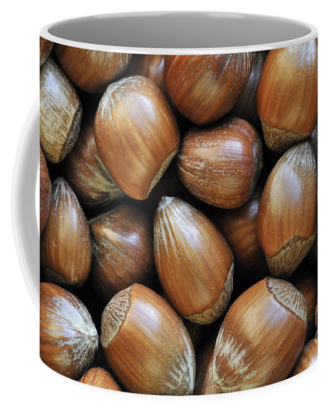 Hazelnut Coffee Mug featuring the photograph Hazelnoot 3 by Arterra Picture Library