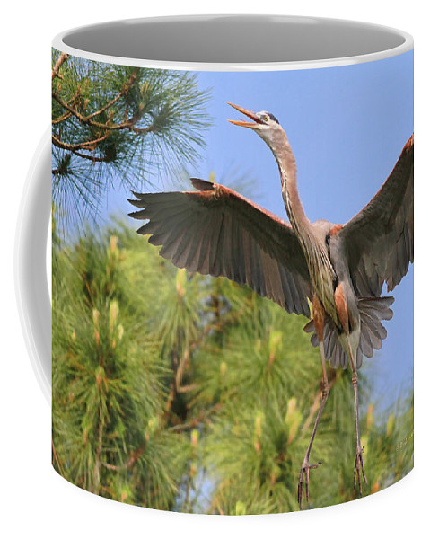 Blue Heron Coffee Mug featuring the photograph Hb In The Pines by Deborah Benoit