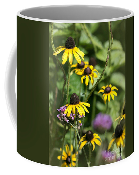Art Coffee Mug featuring the photograph He Loves Me He Loves Me Not by Sabrina L Ryan