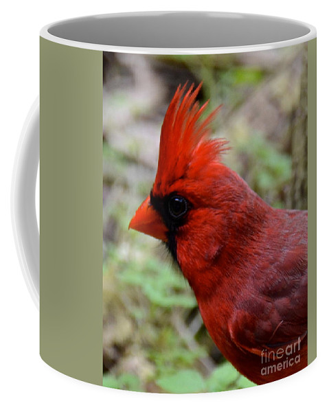 Cardinal Coffee Mug featuring the photograph Head Shot by Carol Bradley