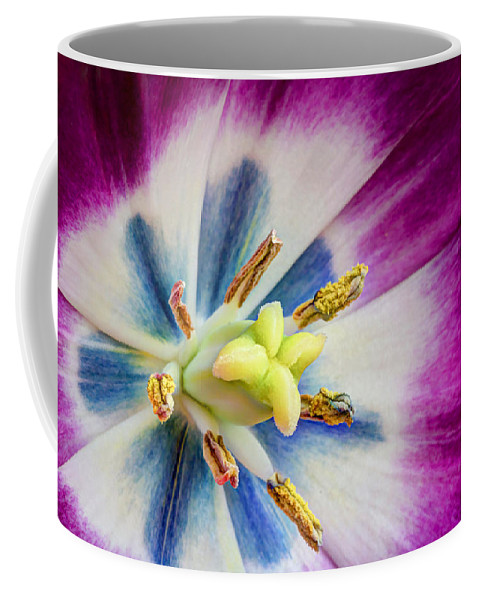 Purple Coffee Mug featuring the photograph Heart Of A Tulip by Heidi Smith