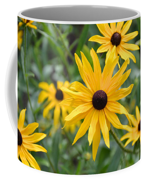 Black-eyed Susans Coffee Mug featuring the photograph Hello Sunshine by Kristin Hatt