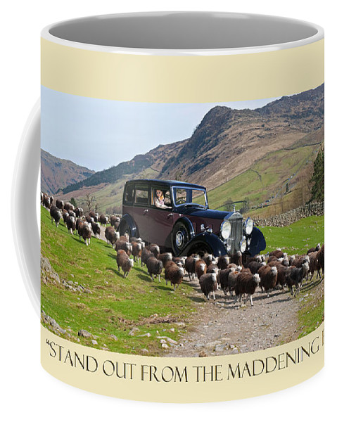 Stand Out From The Maddening Flock In Your 1938 Rolls Royce Limousine Coffee Mug featuring the photograph Get The Flock Out by Jack Pumphrey