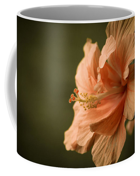 Hibiscus Coffee Mug featuring the photograph Hibiscus by Brian Caldwell