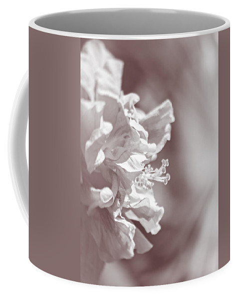 Hibiscus Coffee Mug featuring the photograph Hibiscus In Sunlight by Carolyn Marshall