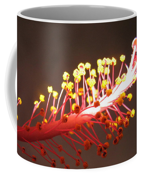 Hibiscus Coffee Mug featuring the photograph Hibiscus by Mary Ellen Mueller Legault