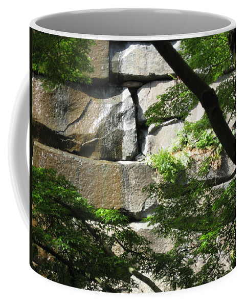 Seattle Coffee Mug featuring the photograph Hidden Waterfall by David Trotter