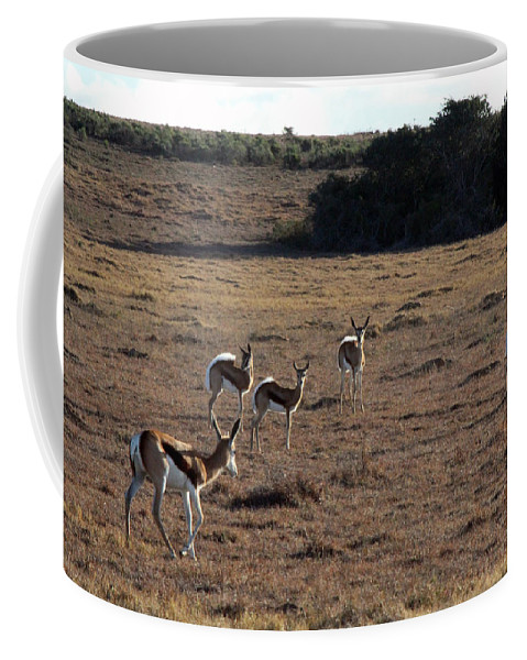Springbok Coffee Mug featuring the photograph High Alert by Chris Whittle