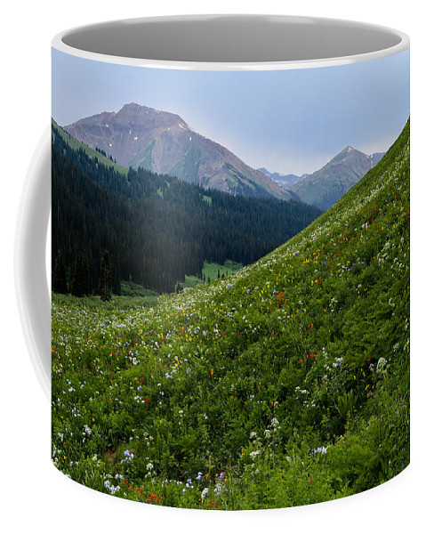 Flower Coffee Mug featuring the photograph High Meadow by Kevin Buffington