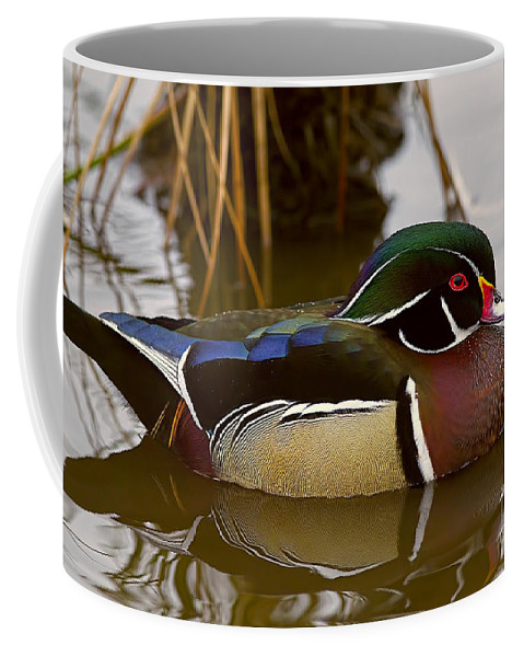Wood Duck Coffee Mug featuring the photograph His Majesty Wood Duck by Sharon Talson