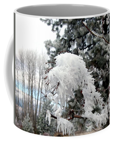 Hoarfrost 19 Coffee Mug featuring the photograph Hoarfrost 19 by Will Borden