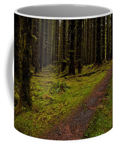 Hoh Rainforest Coffee Mug featuring the photograph Hoh Rainforest Road by Mike Reid
