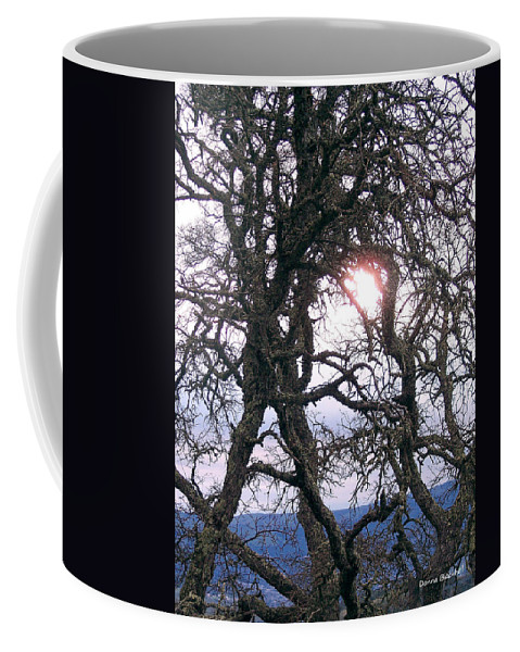 Sun Coffee Mug featuring the photograph Holding On To The Sun by Donna Blackhall