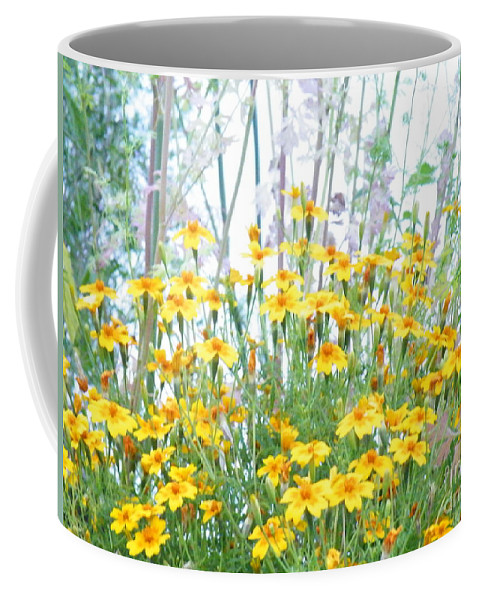 Daisy Coffee Mug featuring the photograph Holding The Foreground by Brian Boyle