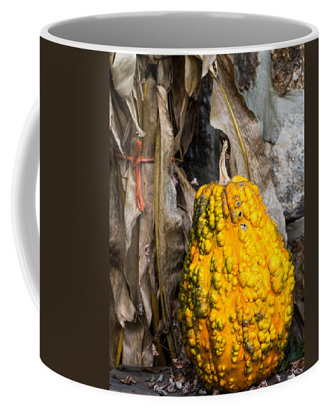 Gourd Coffee Mug featuring the photograph Holiday Gourd by David Kay
