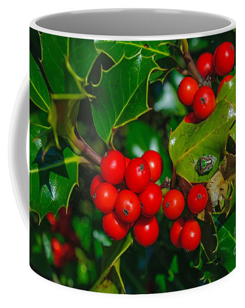 Holly Coffee Mug featuring the photograph Holly And Berries by Tikvah's Hope