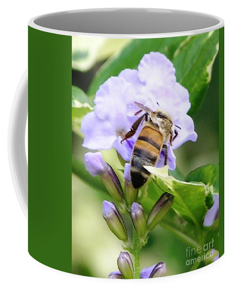 Purple Flower Coffee Mug featuring the photograph Honey Bee On Lavender Flower by Mary Deal
