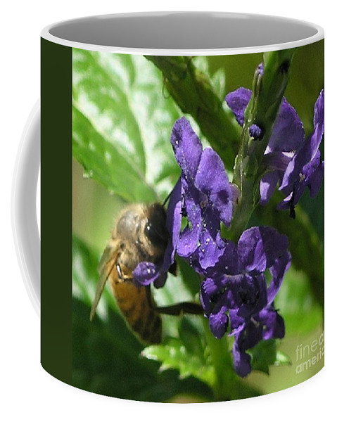 Purple Coffee Mug featuring the photograph Honey Bee On Purple Flower by Mary Deal