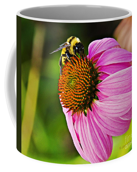 Flower Coffee Mug featuring the photograph Honeybee On Echinacea Flower by Walter Herrit