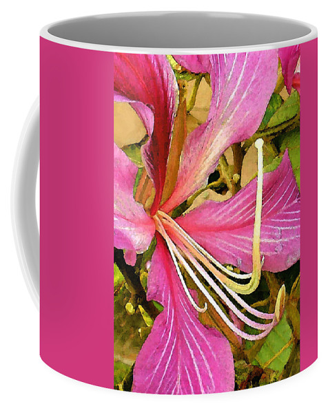 James Temple Coffee Mug featuring the photograph Hong Kong Orchid Tree by James Temple