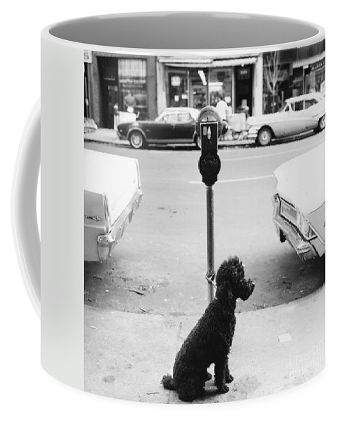 Dog Coffee Mug featuring the photograph Hope They Put Money In The Meter by John Veltri