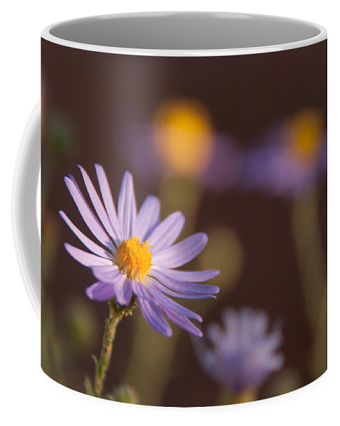 Photography Coffee Mug featuring the digital art Horay Spine Aster by Neal Hebert
